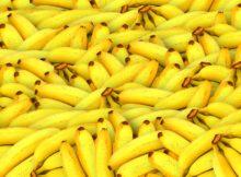 Bananas Benefits
