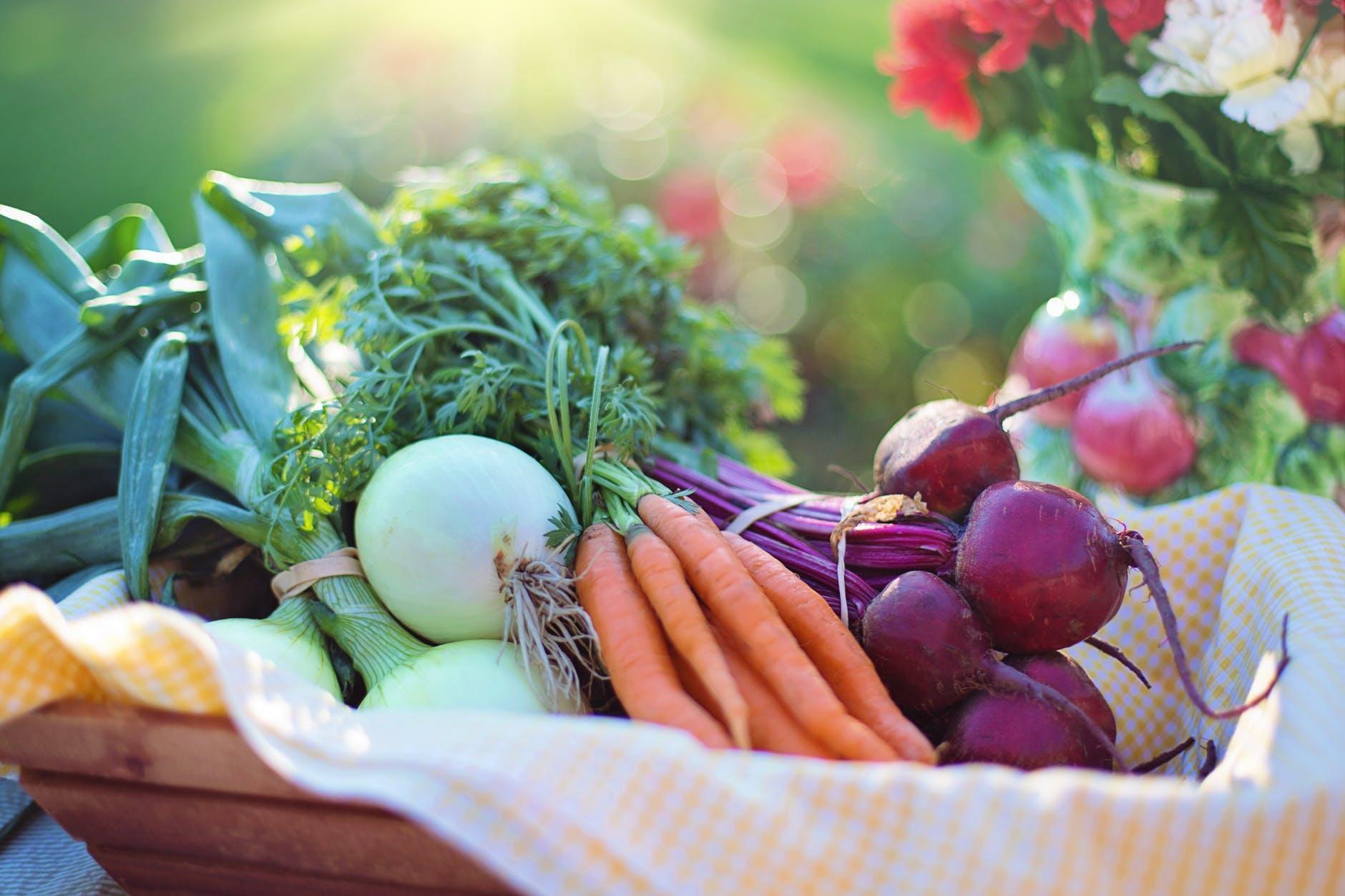 fiber in food