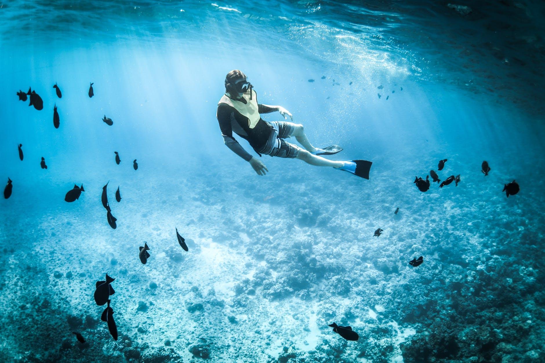 ecotourism-activities